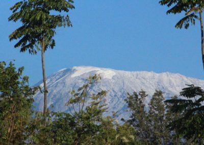 """<a href=""""http://www.pearljourneys.com/kilimanjaro-til-topps/"""" target=""""_blank""""</br>Kilimanjaro</a>"""