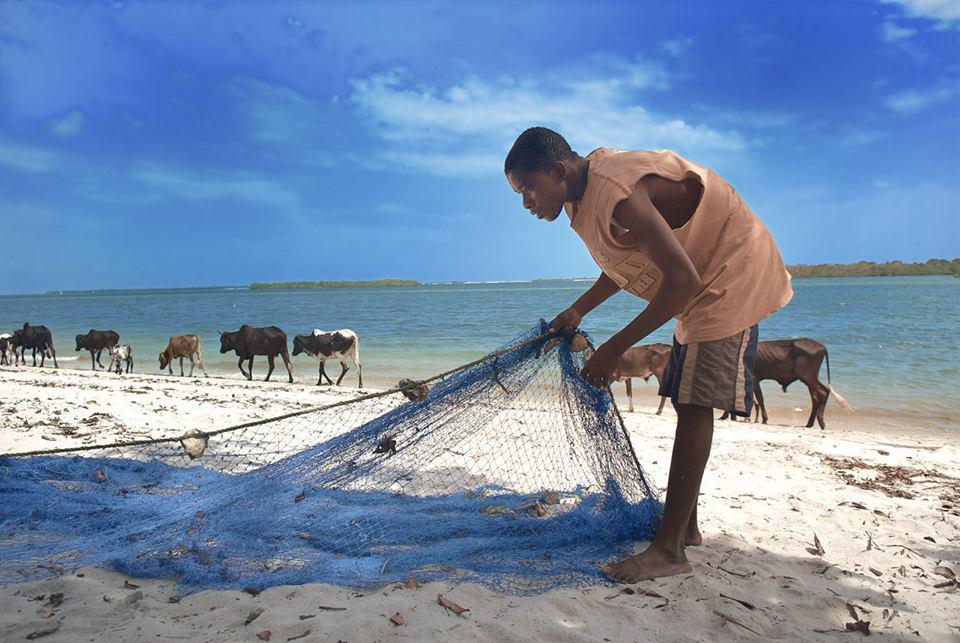 Allsidige Afrika – Autentiske opplevelser