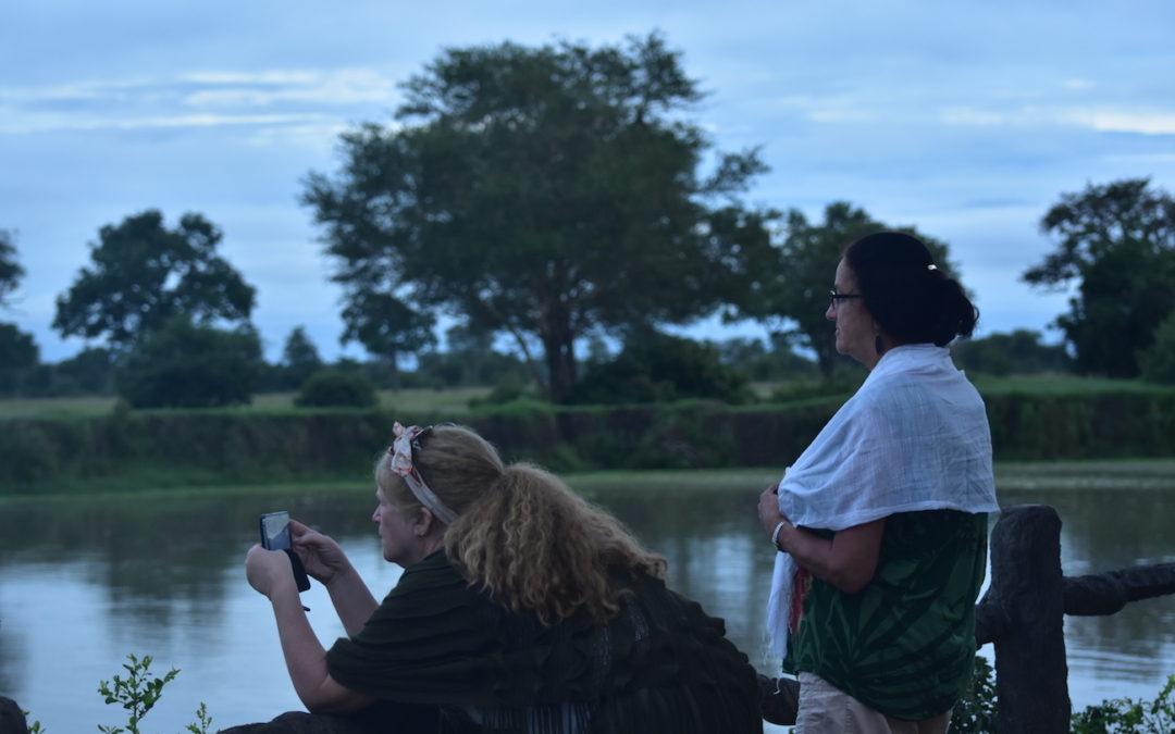 Afrika SAFARI – morgen ved vannhullet